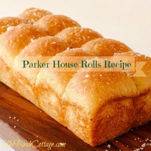 Parker House Rolls Recipe