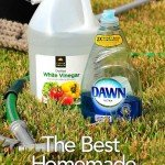 The best homemade window cleaner