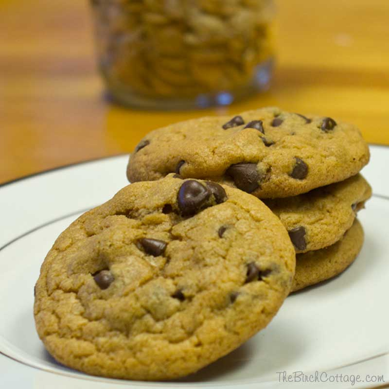 Chocolate Chip Pumpkin Pudding Cookies by The Birch Cottage