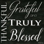 Thankful Grateful and Truly Blessed - What my husband and Captain America have in common!