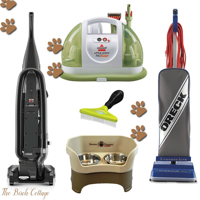 How to Keep Your House Clean when You Live with Pets by The Birch Cottage
