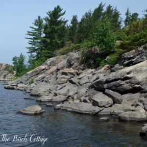 Summer Break on the French River