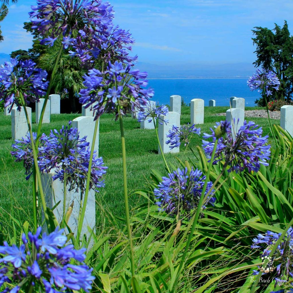 Fort Rosecrans National Cemetery, San Diego, Califronia