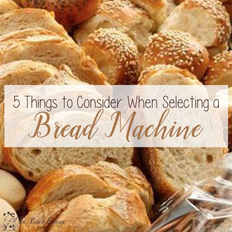 Trying to decide which bread machine is right for you? Here are 5 things to consider before purchasing a bread machine.