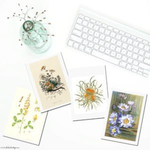 Free Summertime Printable Vintage Botanical Cards {Set Three}