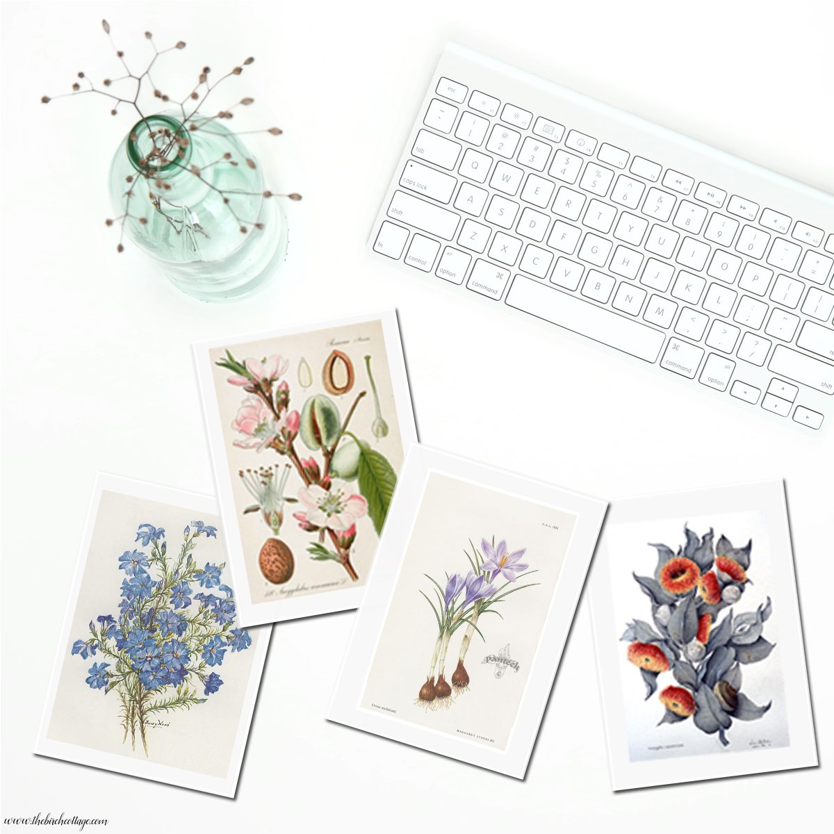 August's Free Printable Vintage Botanical Cards {Set Four} - The