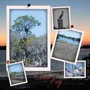 Cedar Key, Florida is for Nature Lovers! {Part One}