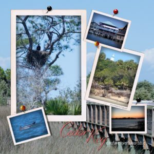 Cedar Key Florida a nature lover's paradise. The Birch Cottage shares a list of attractions and things to do in Cedar Key.