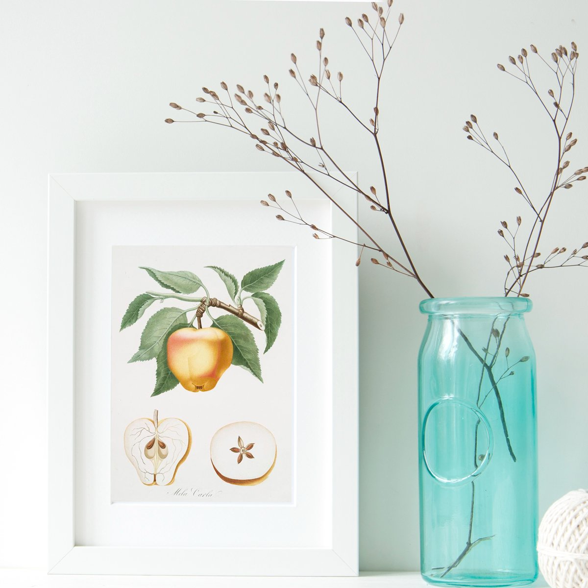 Celebrate the arrival of Spring with these free pintable vintage fruit Illustrations and Cards from The Birch Cottage!
