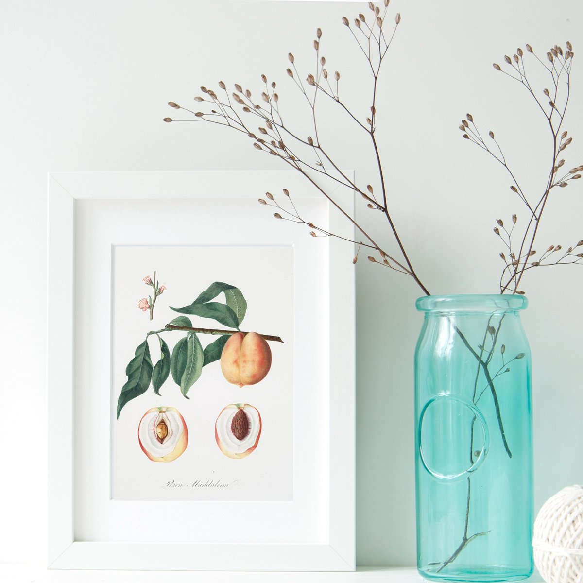 CCelebrate the arrival of Spring with these free printable vintage fruit tree Illustrations and Cards from The Birch Cottage!