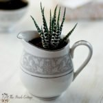 Make this succulent planter from repurposed china!