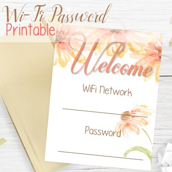 Download your free WiFi printable from The Birch Cottage