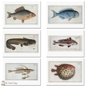 Printable Fish Note Cards for Dad from Vintage Illustrations