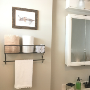 Our Bathroom Renovation & a Free Gargany Teal Print!