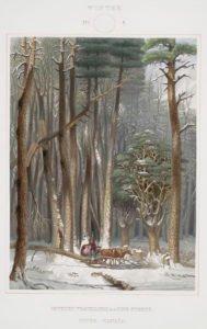 Four Seasons Vintage Illustrations - Winter
