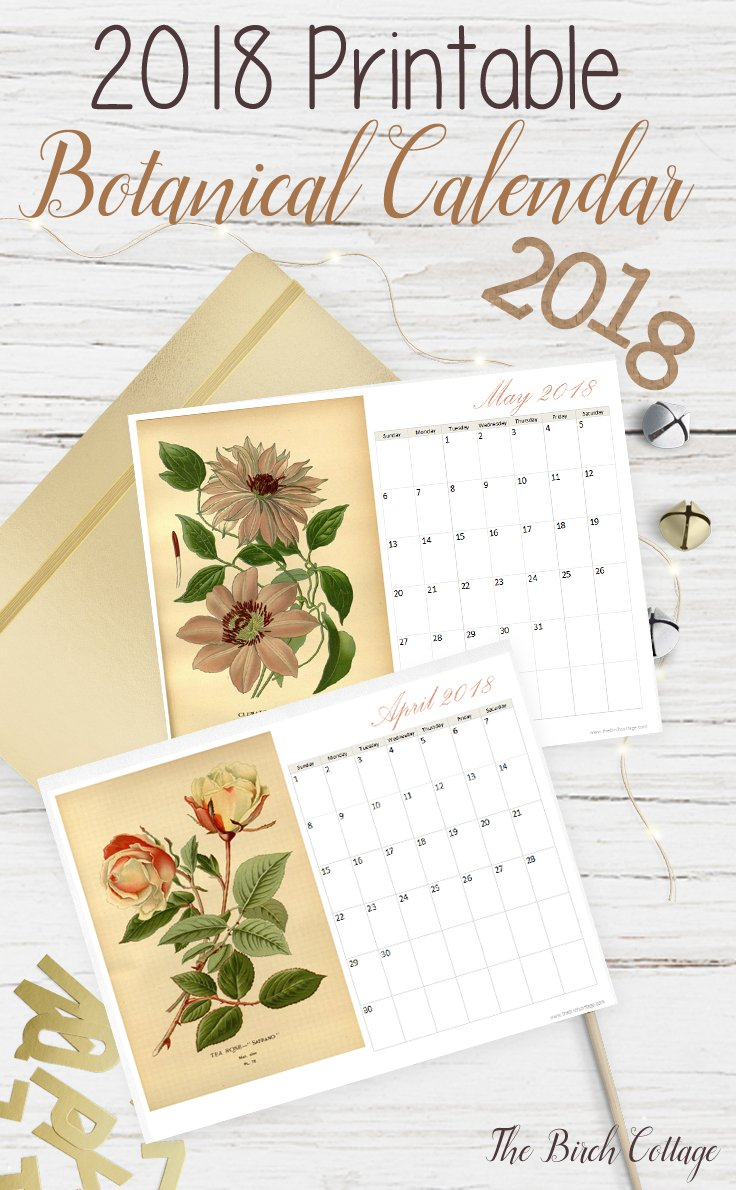 2018 Printable Monthly Calendar features vintage botanical illustrations.