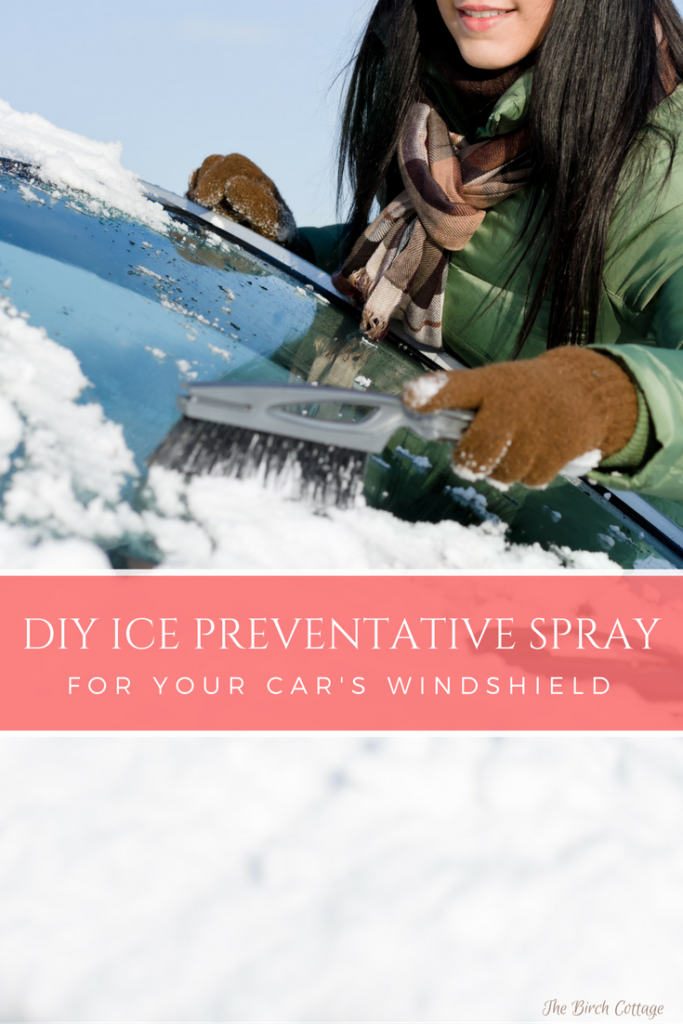 DIY Ice Preventative Spray for your car by The Birch Cottage