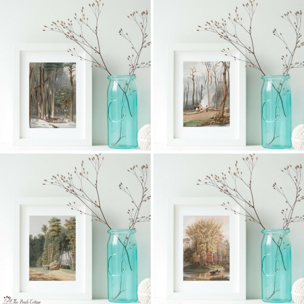 Download these Four Seasons Tall Trees Vintage Illustration Prints from The Birch Cottage