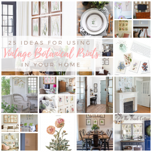 25 Ideas for Using Vintage Botanical Prints in Your Home by The Birch Cottage