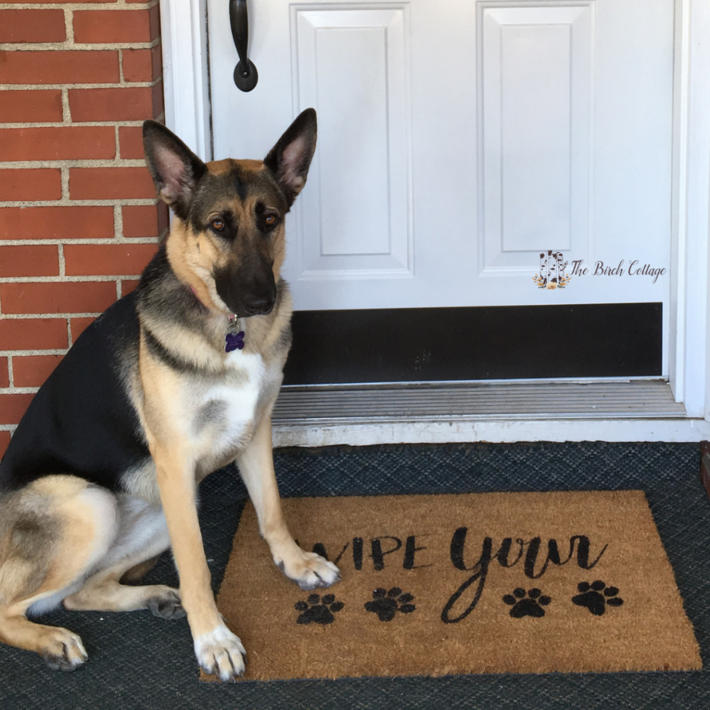 Wipe Your Paws DIY Personalized Doormat by The Birch Cottage