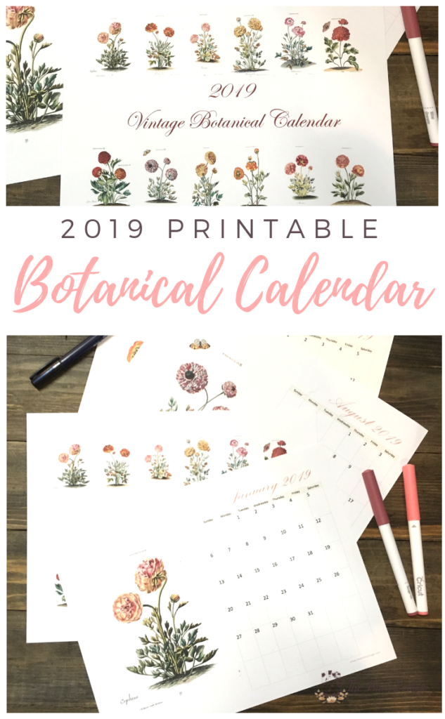 Use this free 2019 printable monthly calendar with vintage botanical art to record your important dates. Use as a wall calendar or desk calendar.