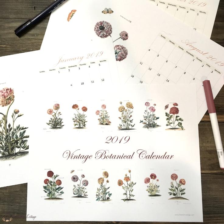 2019 Printable Botanical Calendar by The Birch Cottage