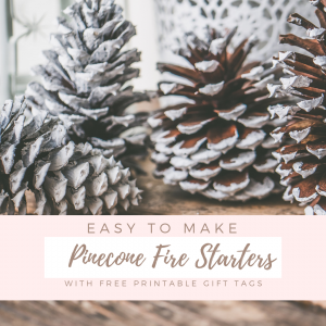 Easy to Make Pinecone Fire Starters by The Birch Cottage