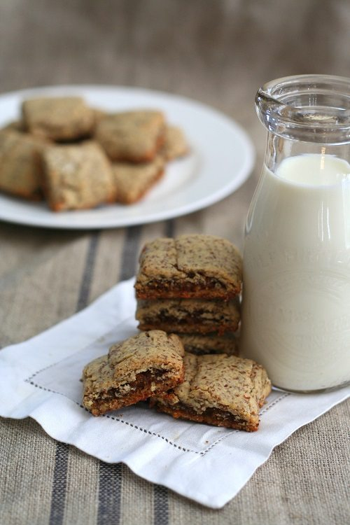 Gluten-Free Fig Newtons from All Day I Dream About Food