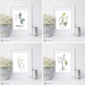 Set of 4 Floral Quote Prints by The Birch Cottage