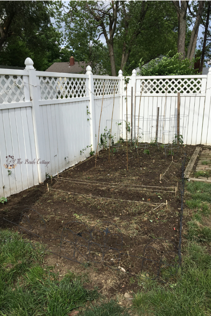 white fence in background with backyard vegetable garden layout