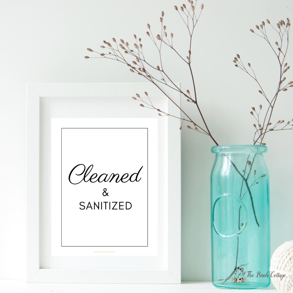 Cleaned & Sanitized framed print with vase