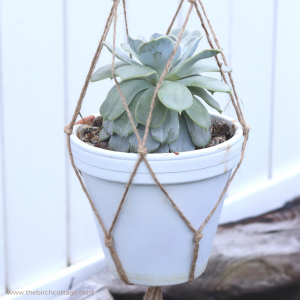 Learn to make this easy macrame plant hanger. You can customize your macrame plant hanger to be any length and fit any size flower pot!
