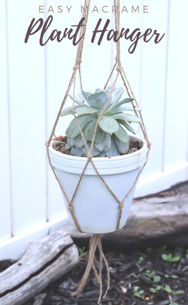 macrame plant hanger with succulent in white flower pot