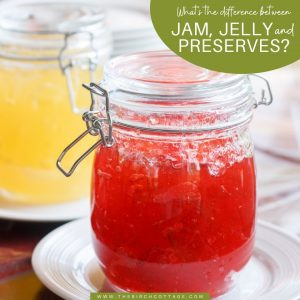Learn the difference between jam, jelly and preserves. Hint: it has to do with the amount of fruit in the final product.