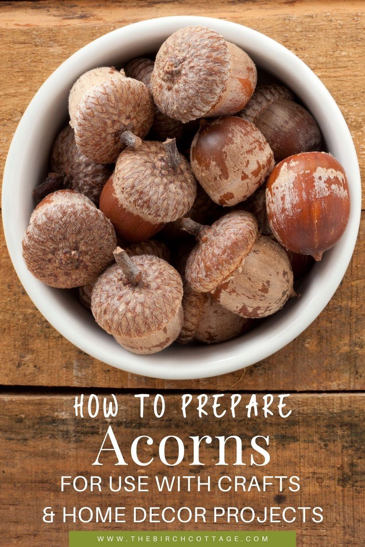 bowl of acorns