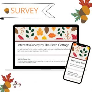 Take part in the reader survey for The Birch Cottage to help me identify ideas that will help you in your crafting journey.