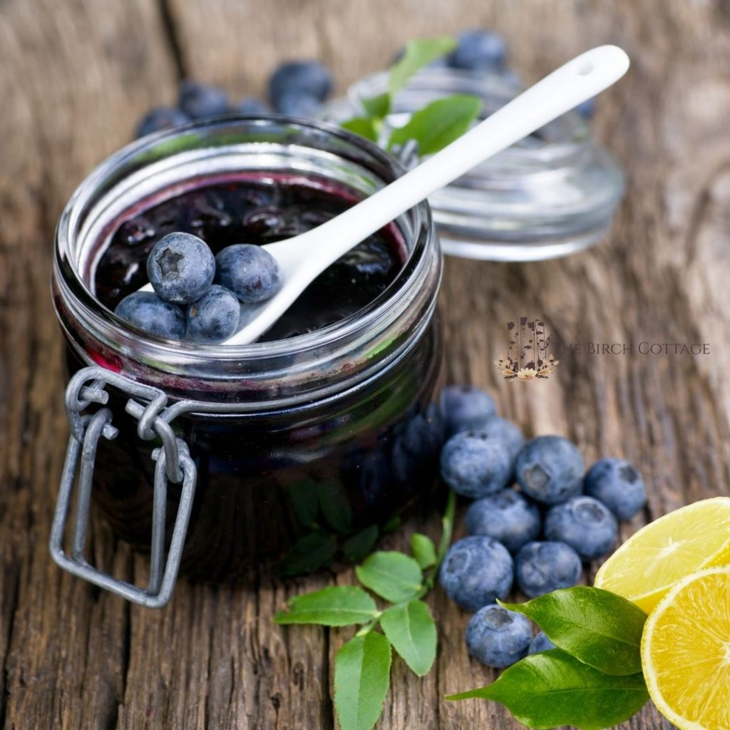 A quick and easy Lemon Blueberry Preserves Recipe that's great over biscuits, toast, or warmed and used as an ice cream topping.